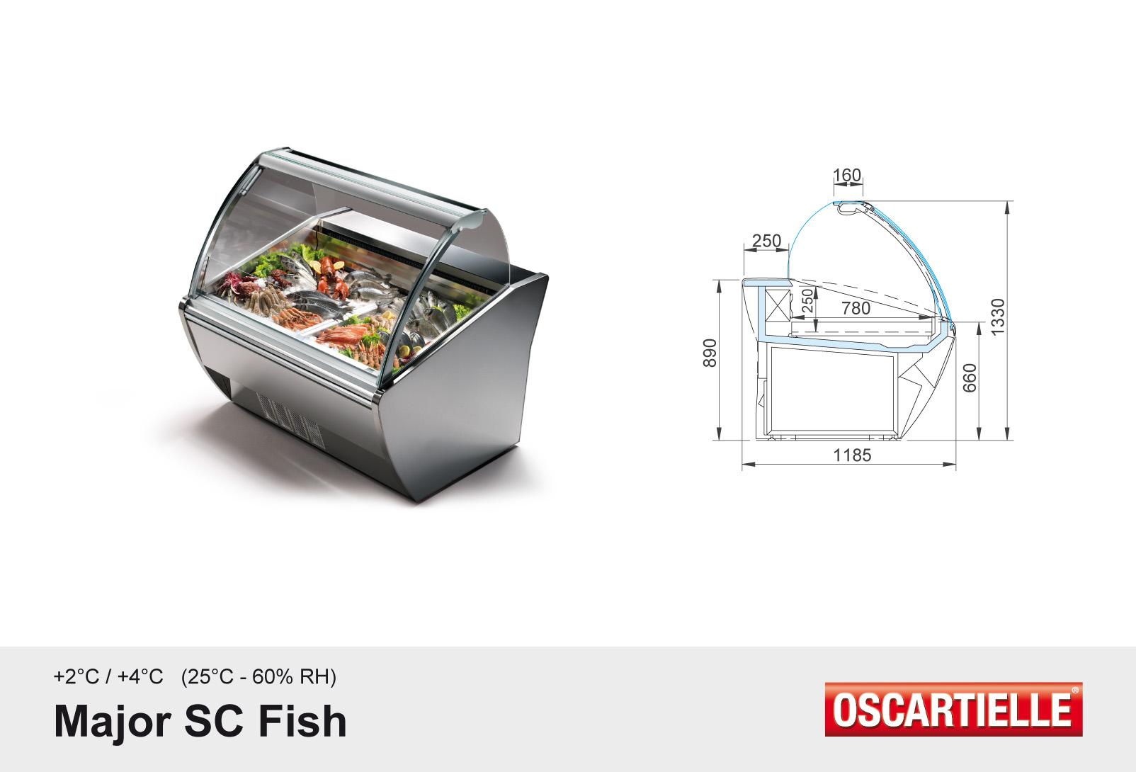 Major SC Fish